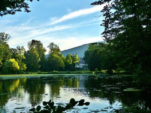 Der Seegarten Amorbach / Foto Wolfgang Thielke